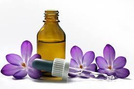 elixirs-floraux-energie